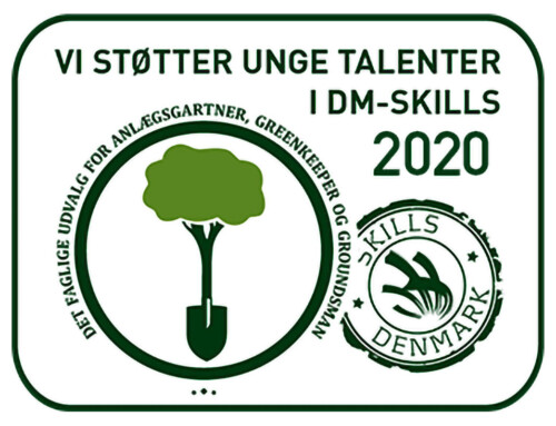 DM i Skills 2020